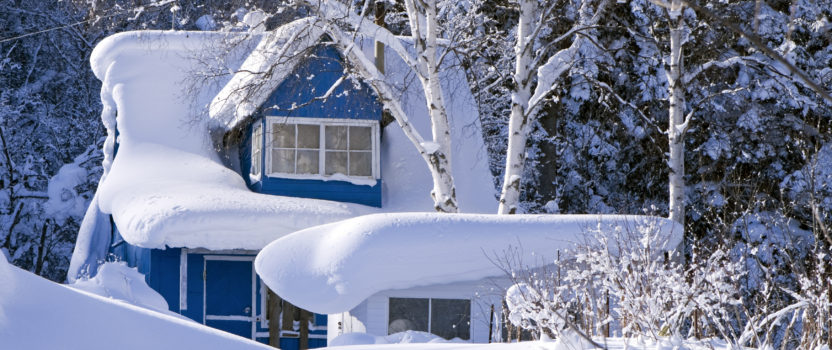 Are you a winter buyer?