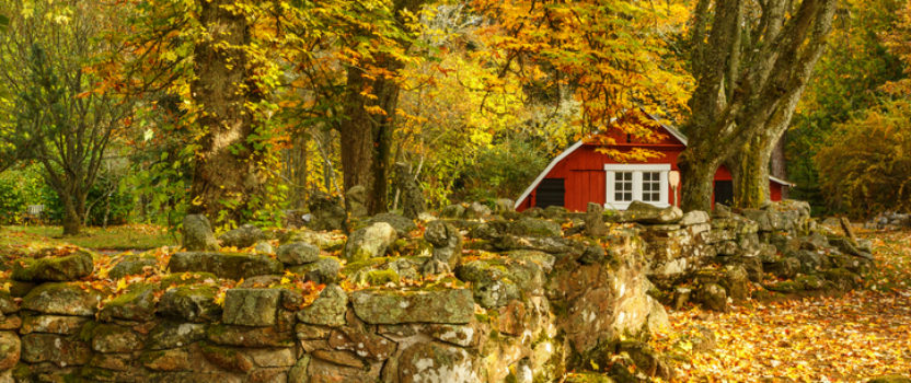 Fall and winter give buyers more negotiating power